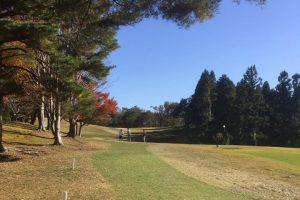 パークゴルフ (奥卯辰健民公園)