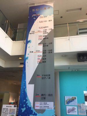 静岡県地震防災センター:津波の高さ