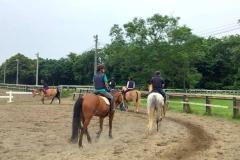 石狩市乗馬体験
